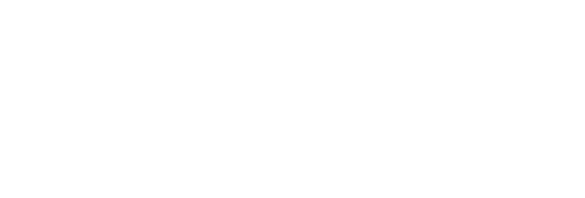 LIPS Brandkasten